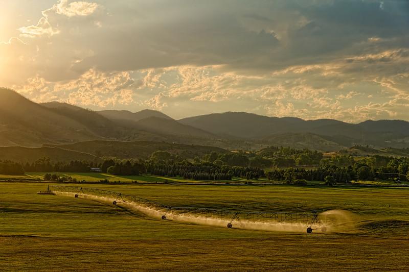 Bucolic Pleasant Valley