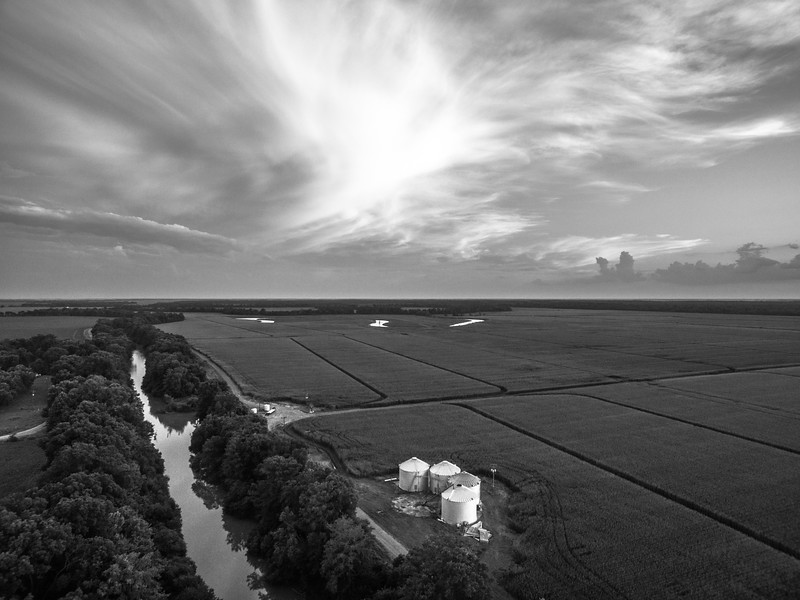 Bins on the Bogue (BW)