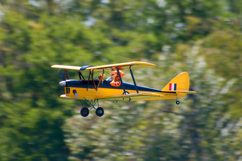 Tigger flying his plane.  RC airport in the 75th street forest preserve trails.