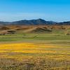 Santa Ysabel Valley (Near San Diego)