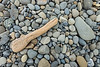 Driftwood and Beach Pebbles