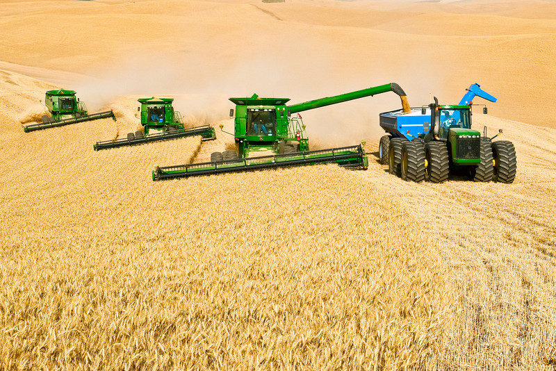 A team of combines harvest wheat while one of them unloads on the go into a grain cart in the Palouse region of Washington