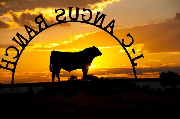 New Mexico Ranch