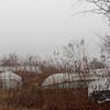 FoggyLakeBoats-120127-1