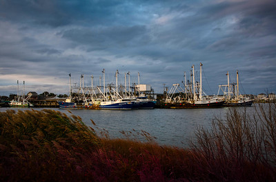 Fishing Boats - Cape May