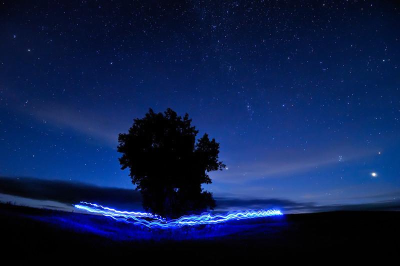Blue Me Around A Tree