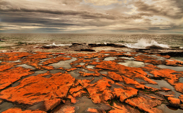 Lake Superior lava with algae on the North Shore, Artists' Point, Grand Marais, Mn. #0169