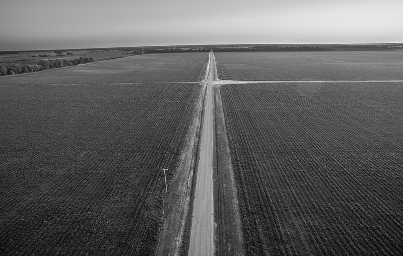 The Road Goes On (BW)