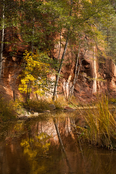 The West Fork of Oak Creek Canyon.  After a long day of hiking, the cold water felt good on my feet.