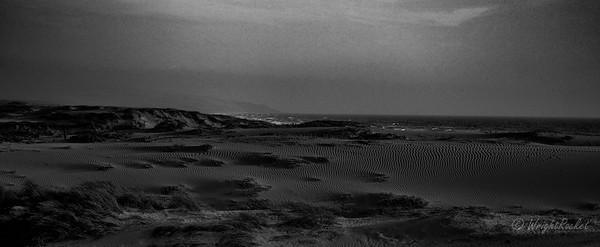 Oso Flaco Beach