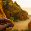 Algarve Lucky Moment Photography By Messagez com