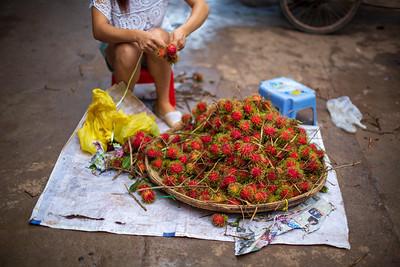 Rambutan (Nephelium lappaceum; Sapindaceae), Xishuangbanna, Yunnan Province, China