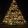 Cape Porpoise Christmas Tree