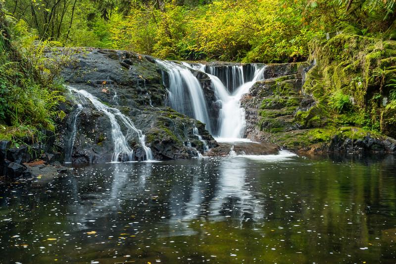 Sweet Creek Falls Trail, Oregon