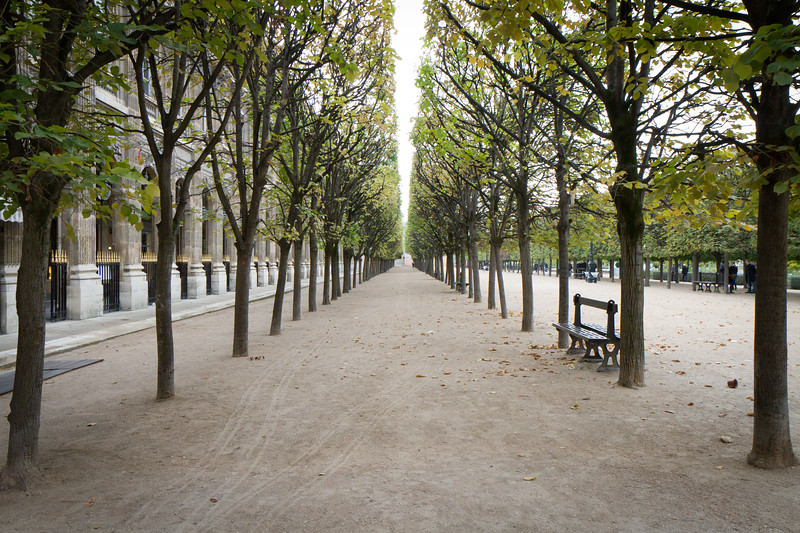 The gardens of the Palais Royale, near the Louvre