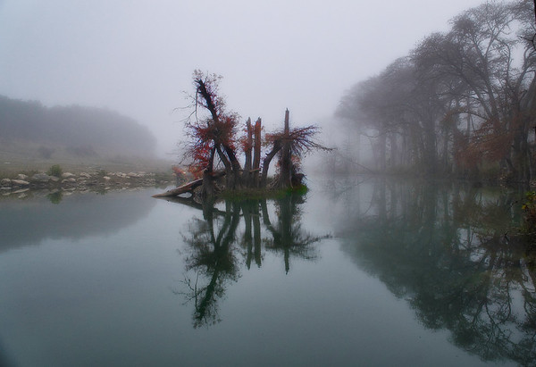 Foggy morn on the river