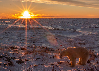 Exhale, Hudson Bay, Canada