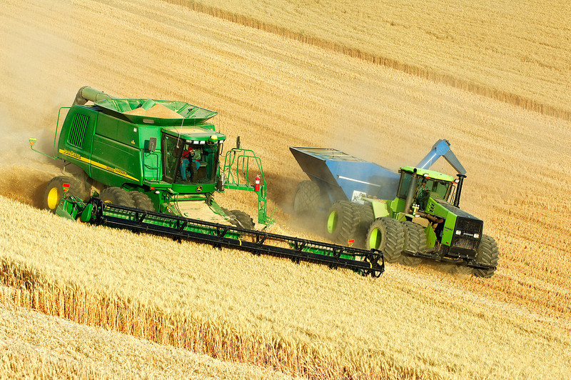 Wheat harvest in the Palouse