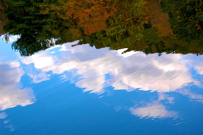 Lake Miriam Reflection