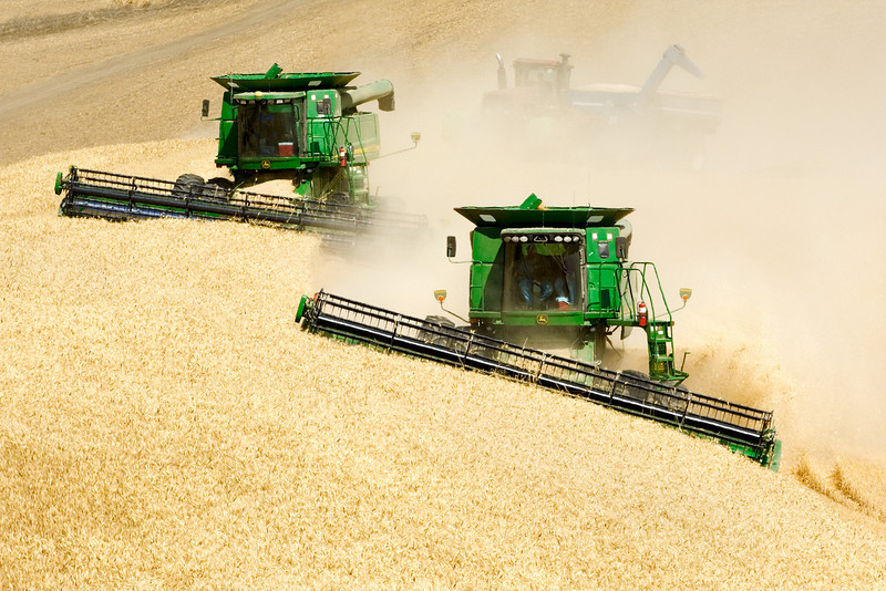Wheat harvest in the Palouse region of Washington