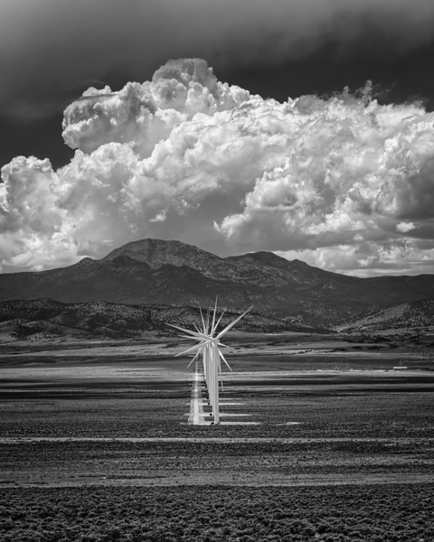 Desert Wind Harvest
