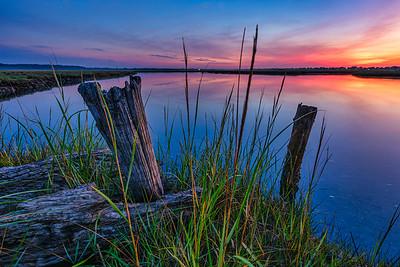 Marsh at Sunrise