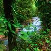 Peaceful Flow