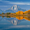 Oxbow Bend reflections of Autumn, Grand Teton National Park, Wyoming