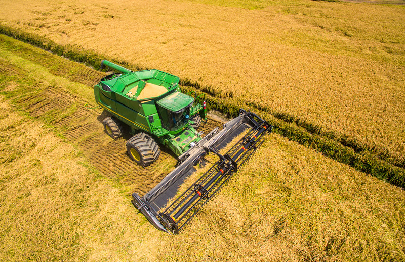 Deere Cutting Rice