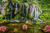 Blarney Waterfall