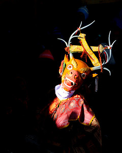 My friend Stanzin playing a deer in the mask dance ceremony of Thiksey monastery.