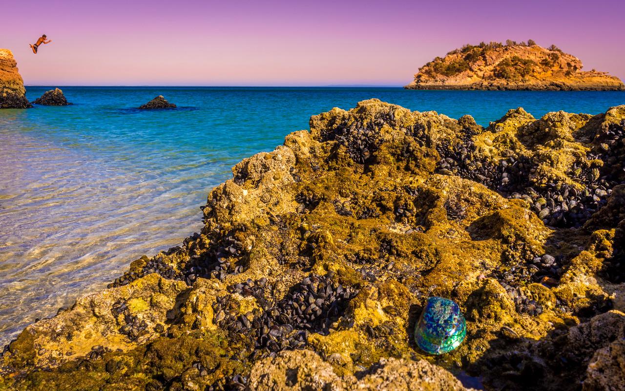 Portugal Arrabida Beach Rainbow Shell Photography By Messagez com