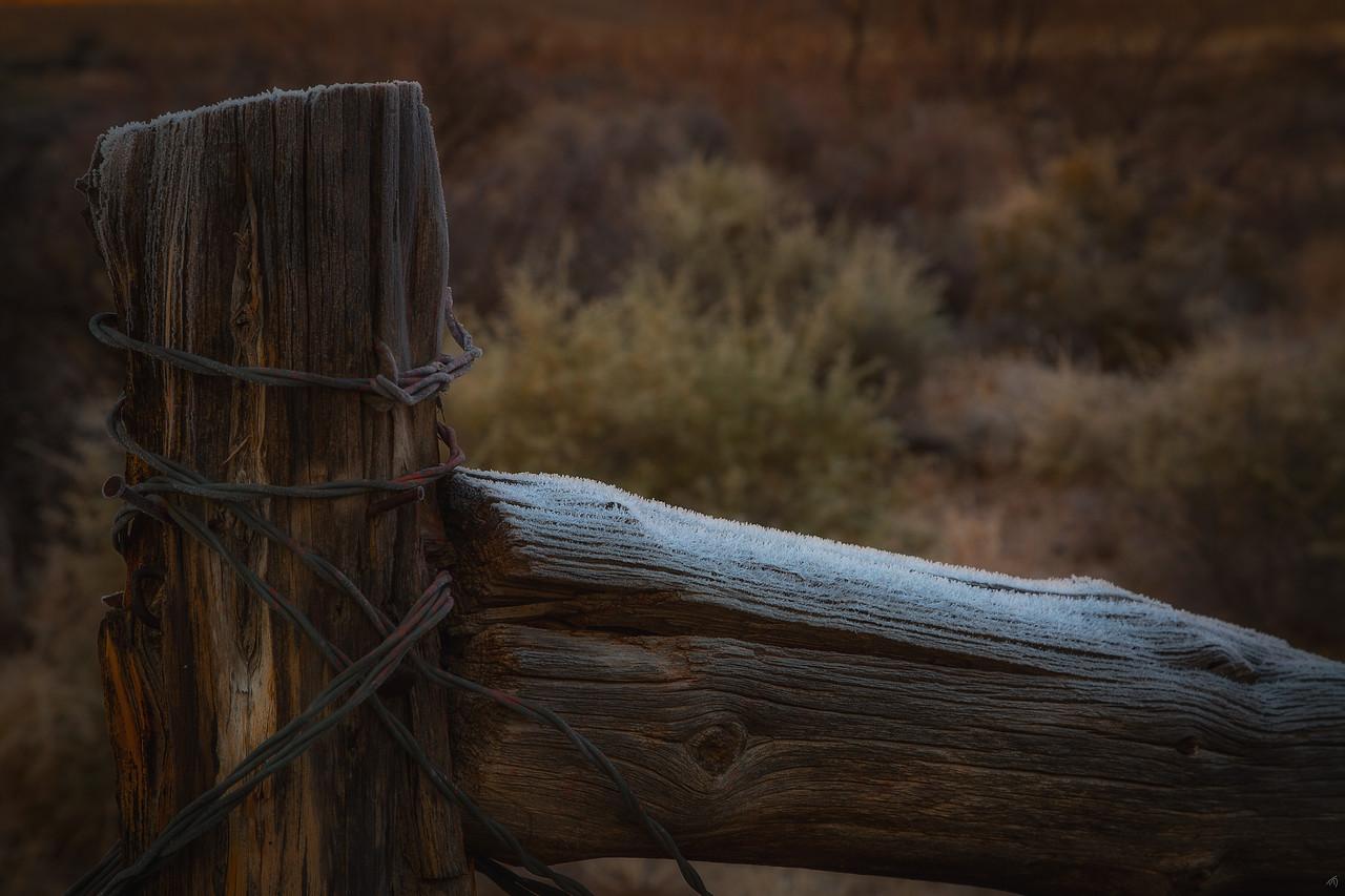 Cold Desert Morning