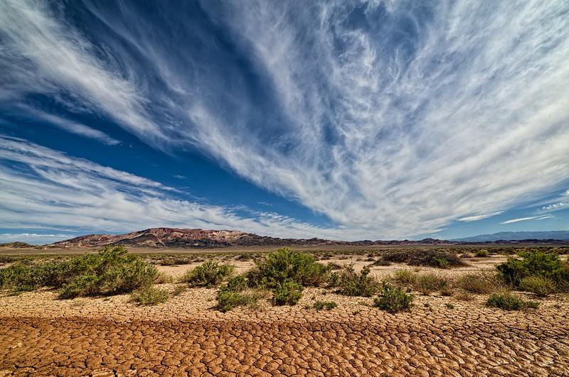 Nevada Desert Desiccation