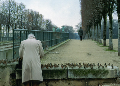 Paris Birdman