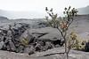 Hawaii, Big Island, Kilauea Crater