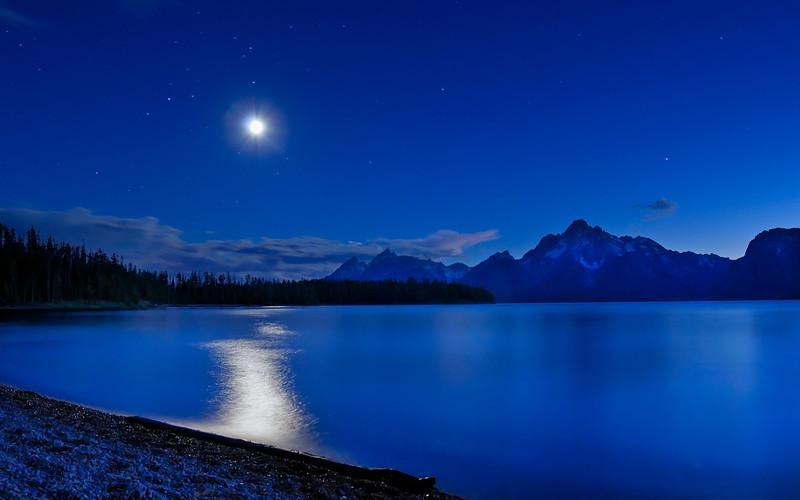 Tetonic Moonshine