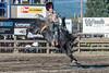 Bareback Riding - 1