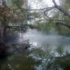 Trinity River Bayou