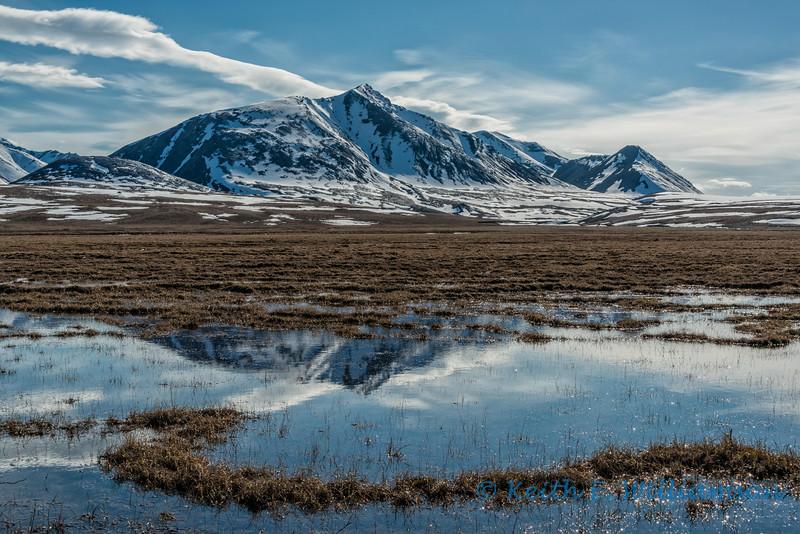 Brooks Range reflection