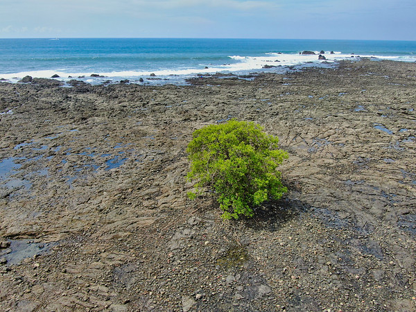 default Thank you for visiting #WildPhotography https://www.wildphotography.com