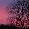 Sunrise-130111