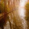 Entrance Keukenhof Gardens, Holland, edited for color change from original, #0675a