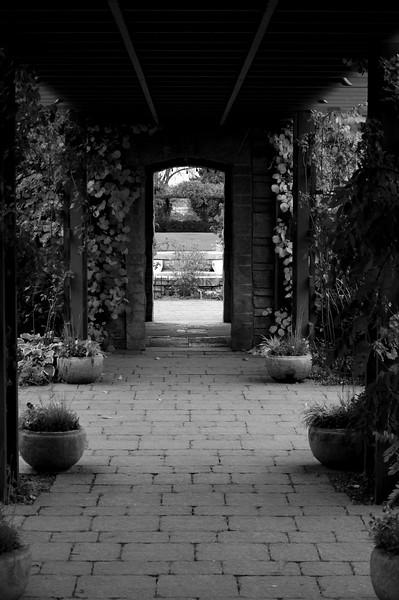 View of the garden through the door