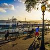 Best of Lisbon Garden Sunshine Art Photography By Messagez com