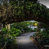 Houmas House Tree Arch Post