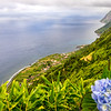 Azores Sao Jorge Island Fajã Beauty Viewpoint Photography By Messagez com
