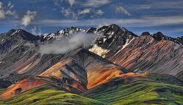 Polychrome Pass, Denali National Park, #0466