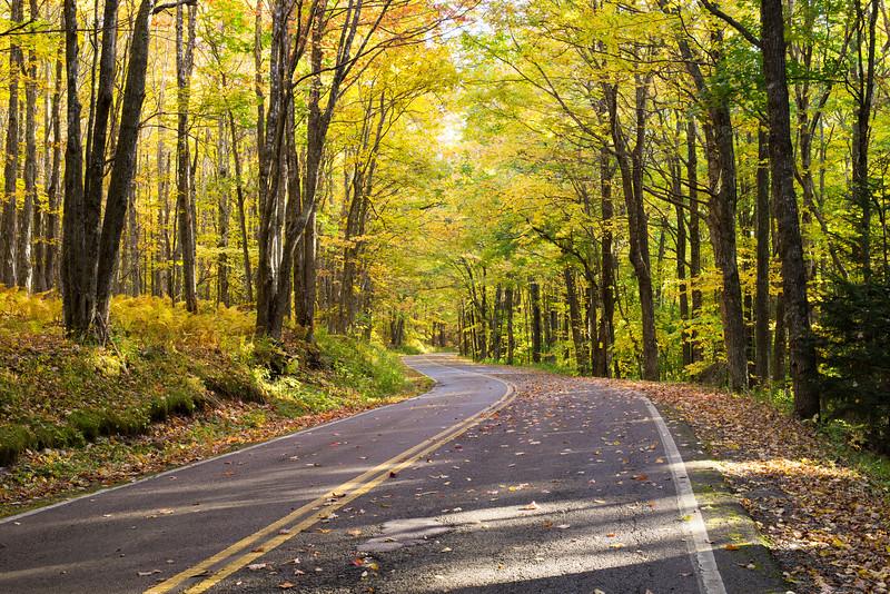 Grayson Highland State Park, Virginia