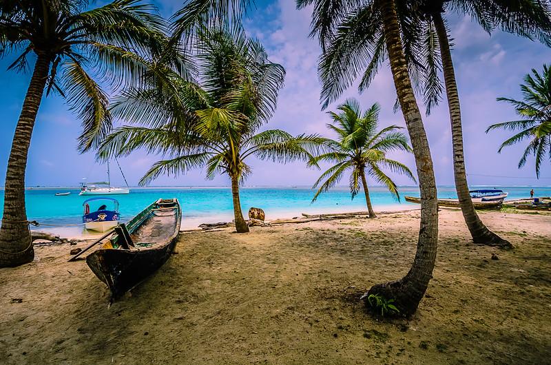 Paradise Photography